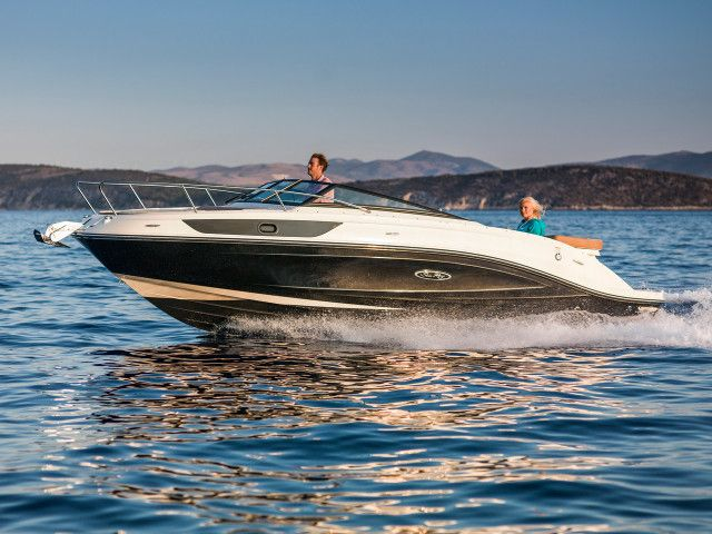 Sea Ray SunSport series SunSport 230