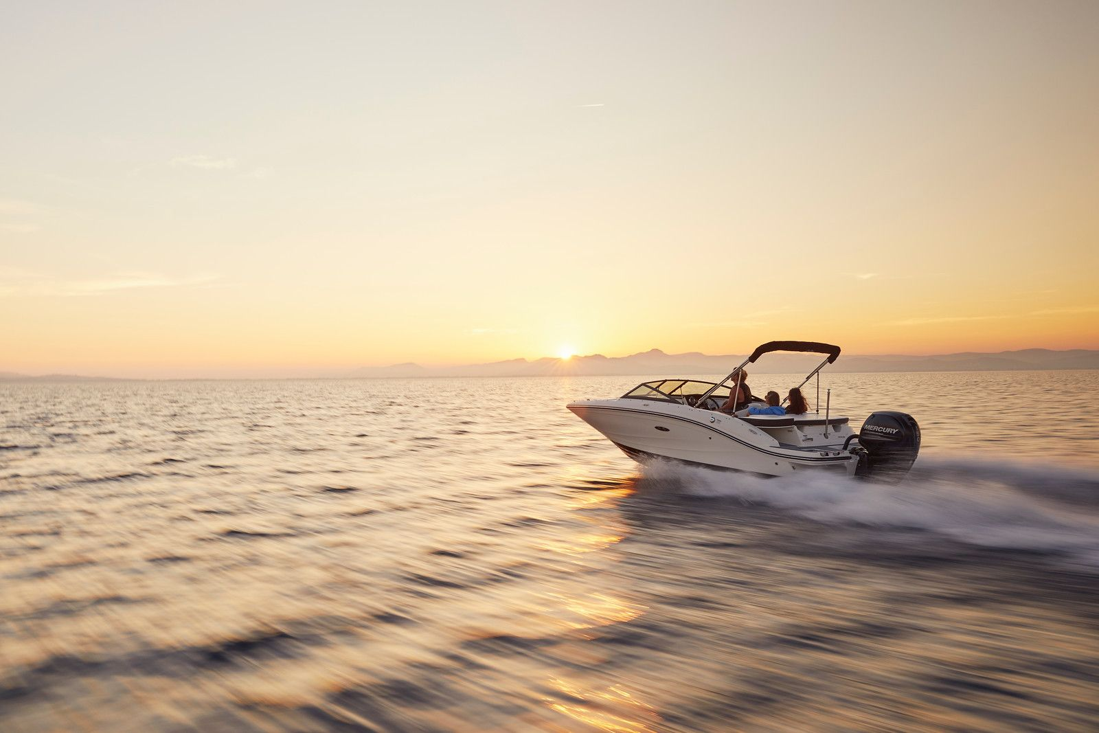 Sea Ray SPX series SPX 190 Outboard
